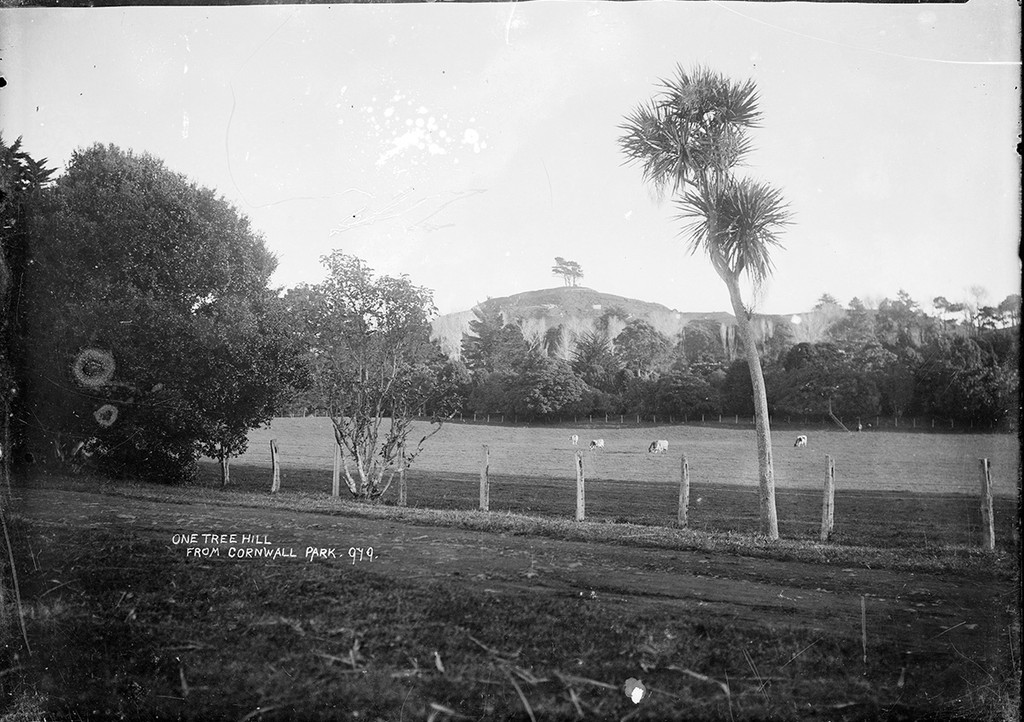One Tree Hill from Cornwall Park, Auckland. Price, William Archer, 1866-1948: Collection of post card negatives. Ref: 1/2-000772-G. Alexander Turnbull Library, Wellington, New Zealand. http://natlib.govt.nz/records/23239931