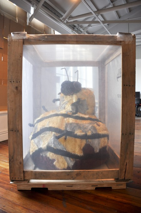 Catherine Caudwell, Deb Tuckey and Samantha Wallis, BEES Forever, 2011. Image courtesy of Lance Cash.