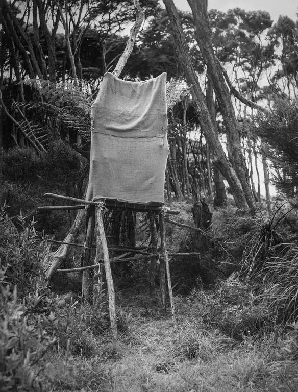 Kenneth Bigwood, 'Little Barrier Island. Bird Life. Pylon hide erected for photographic purposes at the nest of a Bell Bird in a Punga tree.' [AAQT-6539-A20720], Black and white photograph, Dimensions variable, 1949, Copyright Archives New Zealand.