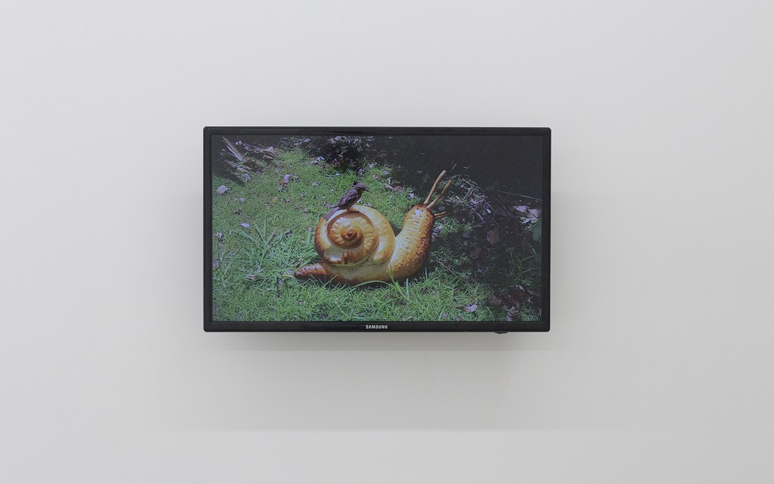 Lucy Meyle, Loaf, 2020, digital video, 1:03:00. Image courtesy of Cheska Brown.