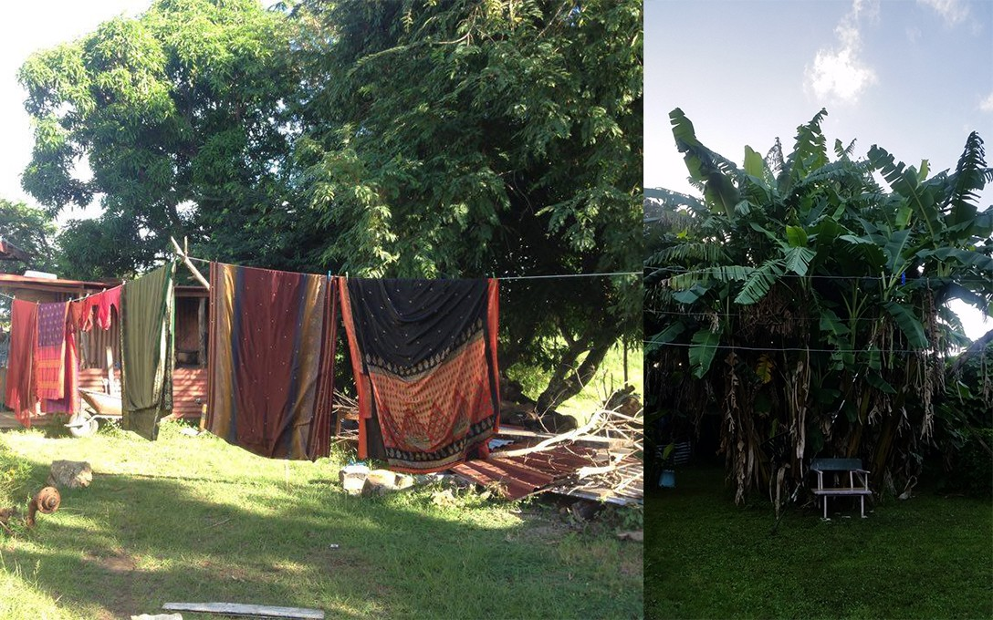 Quishile Charan, Silk sari's drying after being washed, Nawaicoba, Nadi, Fiji, March 2017 [left], Salome Tanuvasa, My mother's backyard, home in Panmure, 2017 [right].