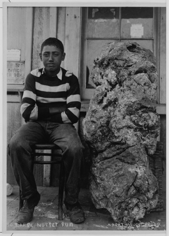 Boy seated by a large nugget of Kauri gum. Northwood brothers: Photographs of Northland. Ref: 1/2-051968-F. Alexander Turnbull Library, Wellington, New Zealand. http://natlib.govt.nz/records/22334258. Permission of the Alexander Turnbull Library, Wellington, New Zealand, must be obtained before any reuse of this image.