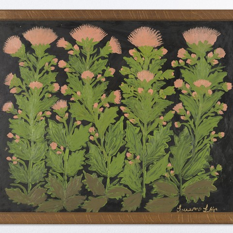 Teuane Tibbo, Opium Poppies, 1968. Collection of Hocken Collections Uare Taoka o Hākena, University of Otago, Ōtepoti Dunedin.
