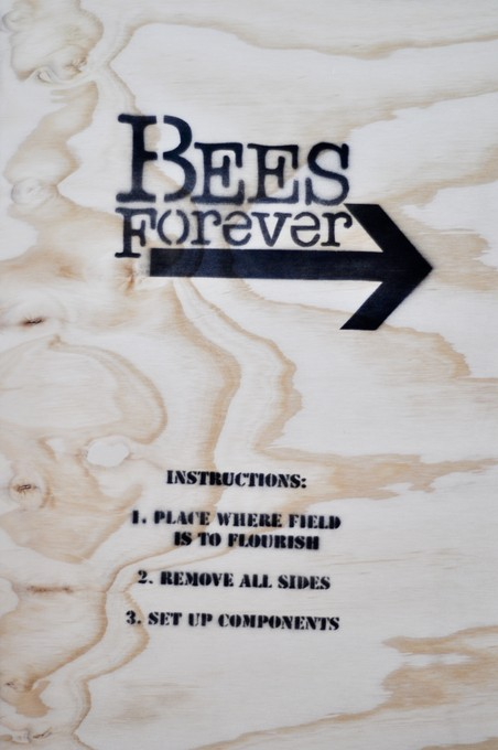 Instructions on how to proceed with implementing your colony of Bees. Image courtesy of Lance Cash.