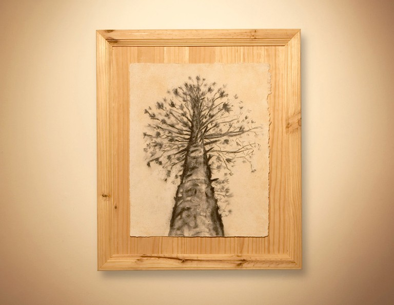 A tree turned into wood, charcoal and paper to represent itself, From the series An Ethnography on Gardening, 2006-2008, In collaboration with Carlos Ortega, Mixed media, All images by Raul Ortega Ayala and Carlos Ortega © Raul Ortega Ayala